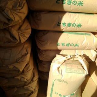 30年産栃木県コシヒカリ30キロ玄米