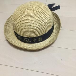 保育園幼稚園 制帽 夏用 M2個L3個