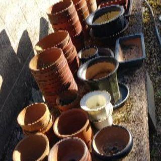 植木鉢 一式