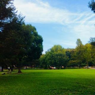 《10/28(日) 芝生で朝ヨガ@太田》