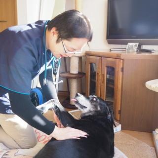 神奈川エリアも往診はじめました。平均寿命20才を目指し、情報・ケ...