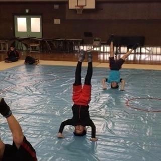 🐳 11月11日 日曜日  17日 土曜日 🍑子供マット運動体験会