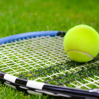 11月3日(土)新宿の中央にある、人工芝コートでゆるテニスしよう...