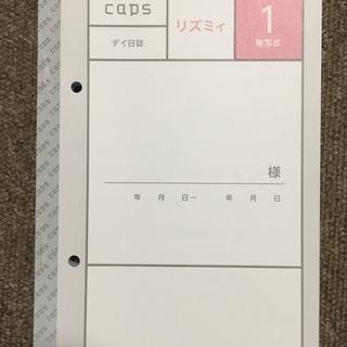 キャプス リズミィ1 デイ日誌 複写 18冊