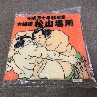 大相撲  松山巡業  秋場所  マス席  座布団
