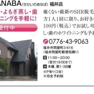 世界のANABA福井店割引きキャンペーン! - 福井市