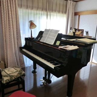タカエ教室(ピアノ教室)生徒募集
