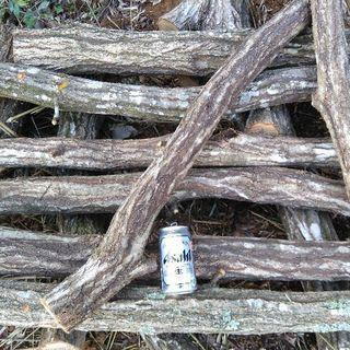 予約受付中!シイタケなどキノコ栽培に。コナラの原木5本セット(増量...