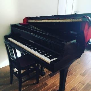 グランドピアノでレッスンできるお教室♫