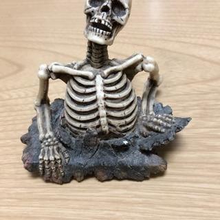 再値下げ!★ スカル 骸骨の置物 ★