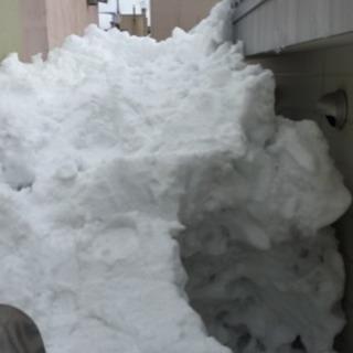 屋根の雪下ろし、除雪、排雪承ります。