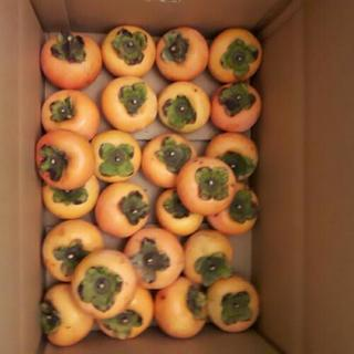 【取引完了】★柿~25個★