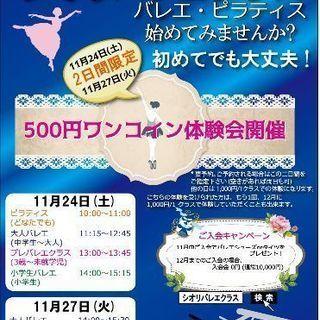 ワンコイン(500円)体験会開催