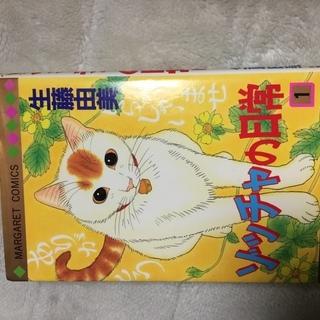 ゾッチャの日常 生藤由美 1巻から3巻と9巻 少女漫画 4冊セット