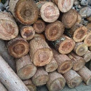 薪ストーブ 用 原木 再入荷