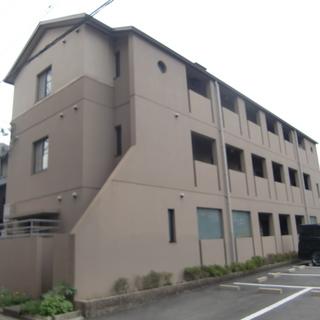 🌟家賃29,000円🌟 マンションタイプ単身向け1K 1階角部屋