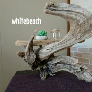 流木  ローテーブル 42㎝