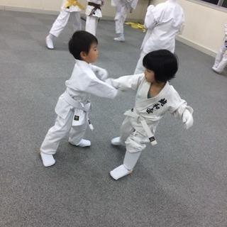 空手・総合格闘技