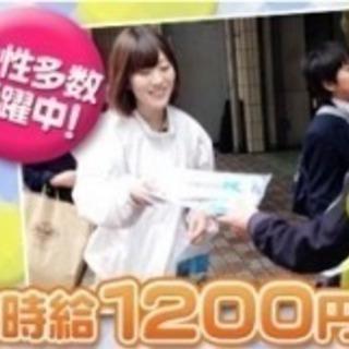 本日11/9【妙典駅】チラシ+ティッシュスタッフ♪嬉しい日払い★...