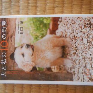 犬と私の10の約束 川口晴 文春文庫
