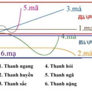 1時間でベトナム語が読めるようになる講座(日本人女性講師 個人レッスン) - 豊中市