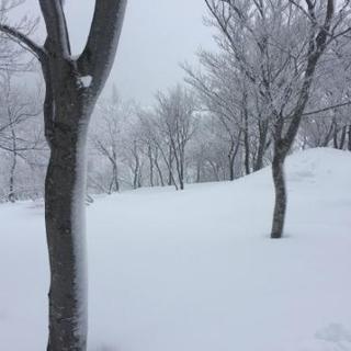 スノーボード、雪山、スノボ