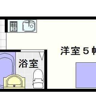 【ドームシティ】C号タイプ!1Rタイプ!隠れ家的な感じが出てますね☆