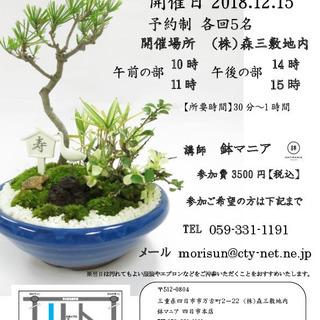 鉢マニア 正月盆栽体験 12/15...