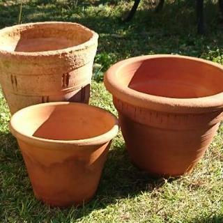 ガーデニング用品・テラコッタ植木鉢 等