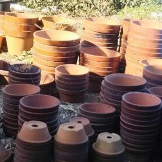 植木鉢(鉢  盆栽用鉢)