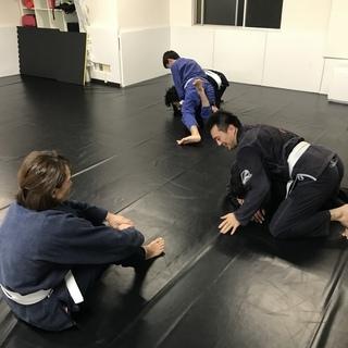 ブラジリアン柔術 無料体験会 開催