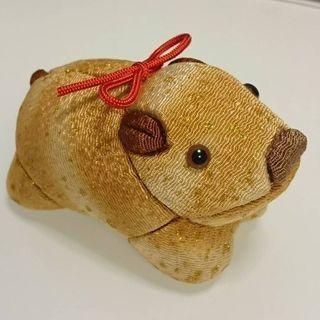 来年の干支(亥🐗)江戸木目込人形を作ろう🌼特別講習会✨開催‼️