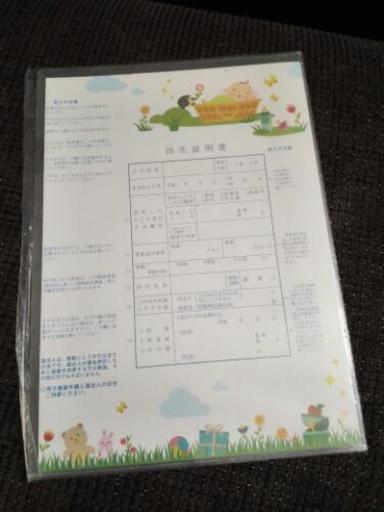 新品】出生届&出生証明書 (nasayuhi) 徳島のその他の中古あげます ...