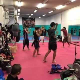 総合格闘技gym エクササイズ 格闘技経験者募集、コーチ