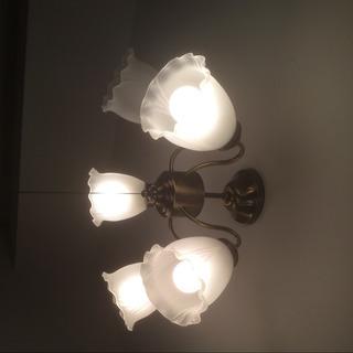 オーデリック 天井照明
