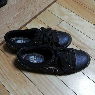 ウィルソン スポーツの茶の靴