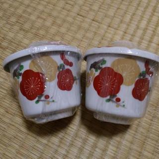【中古か不明】茶碗蒸しの器2個セット