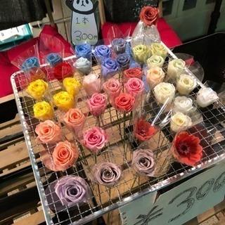 お花 特別価格での店頭販売