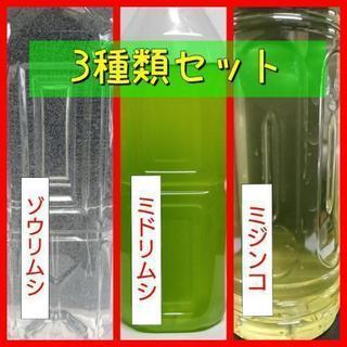 【3種セット】ゾウリムシ・ミドリムシ・ミジンコ種水