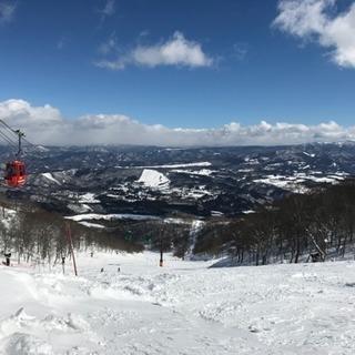 スノボー、スキー仲間募集!