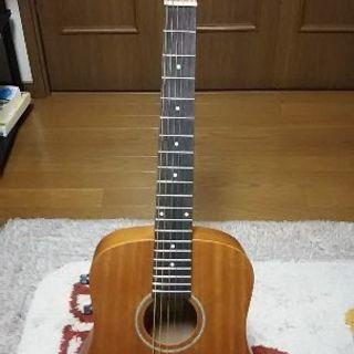 Sヤイリミニギター