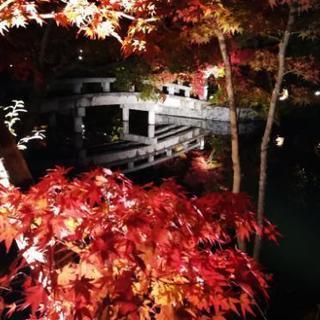 京都の観光地について