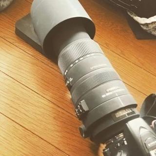 SIGMA500mm望遠レンズ☆彡.。送料無料(ノ´▽`)ノ♪