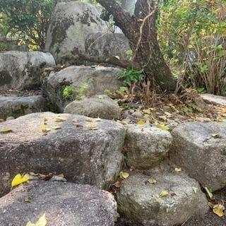 石臼、庭石、玉石差し上げます