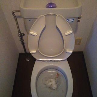 京都市 北区 キッチン トイレ 浴室 洗面 水漏れ 排水管詰まり...