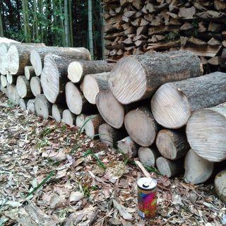 薪や木工に!広葉樹エノキ、タブノキの玉切り丸太。長さ35cm程度。...