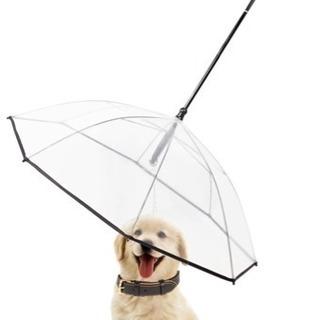 【値下げ】ペット用傘 ※未使用品※