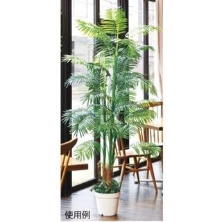 人工観葉植物 アレカヤシ