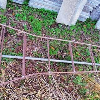 植木剪定 はしご 鉄製