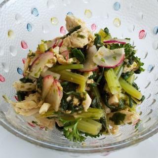 ターップリ【水菜】無農薬野菜